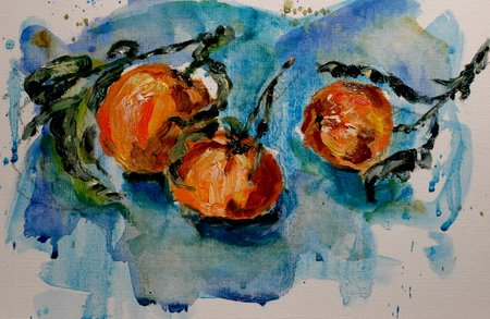 clementine2-06-jan-08-4-55-11-pm.jpg