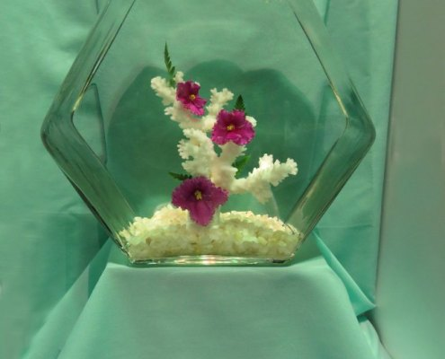 Underwater African violet design using three red flowers and coral