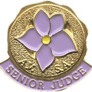 """Image of round gold lapel pin with lavender violet in enamel and the words """"AVSA Senior Judge"""" below"""
