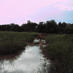 niger woman walks for water