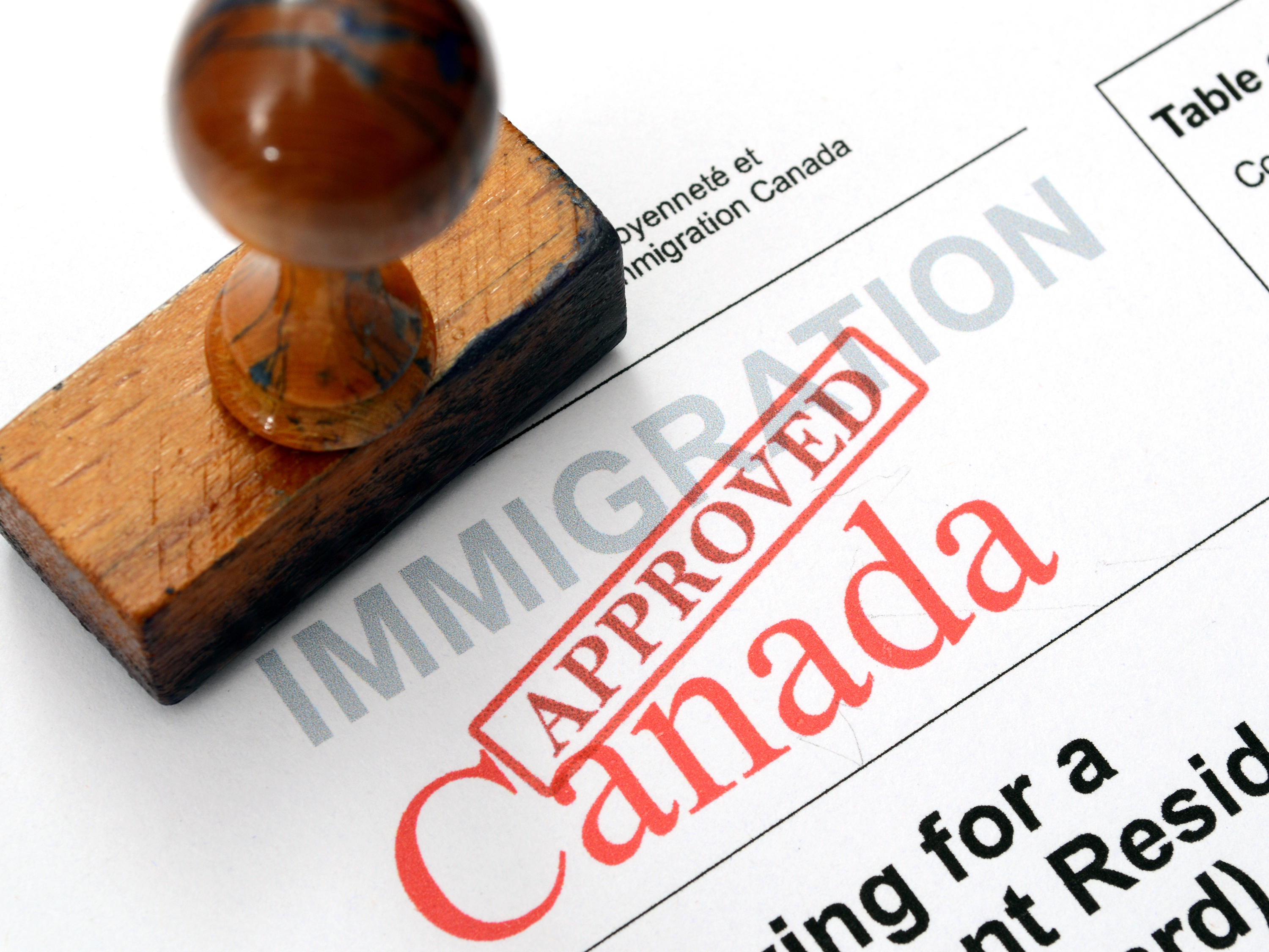 Mesay Accounting Business And Immigration Services