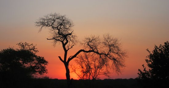 New lodge to open in Kruger National Park