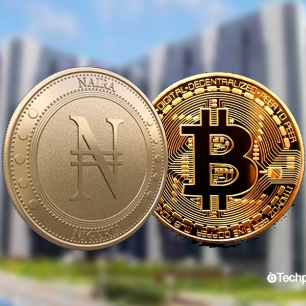 eNaira: How much control does a private blockchain give the CBN?