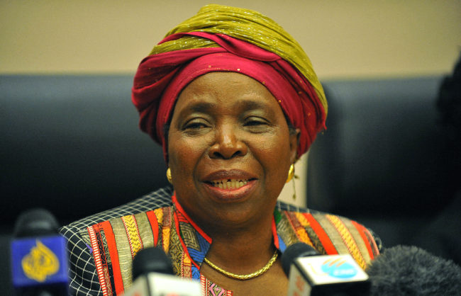Dlamini-Zuma battling for ex-husband's seat