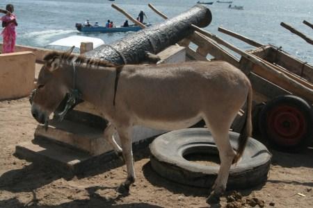 tyres in Lamu
