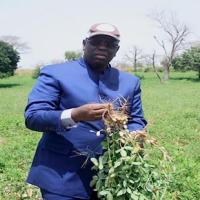 Sénégal : Un taux de croissance de 7% en 2018 selon les prévisions de la Banque Mondiale