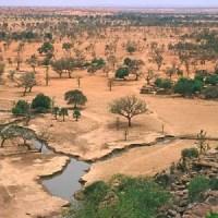 Dossier : Une étude de la FAO fournit des images détaillées sur les arbres, forêts et sur l'utilisation des terres dans les zones arides du monde
