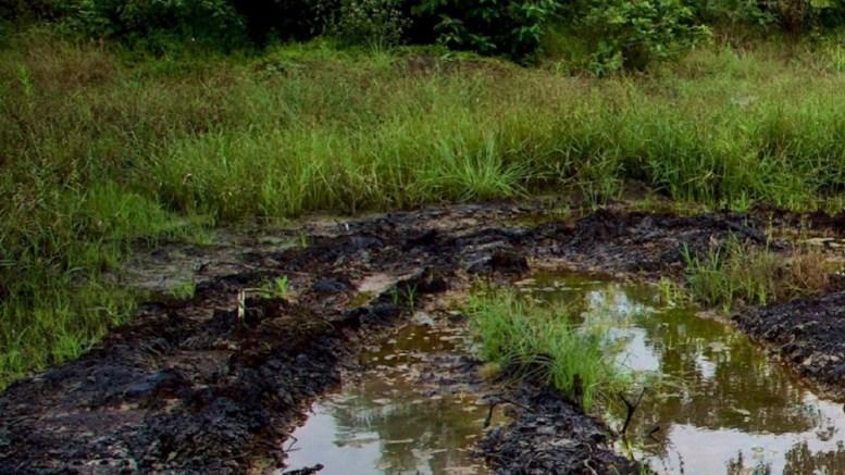 la guerre au delta du Niger