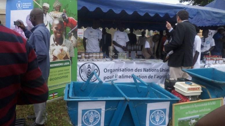 Centrafrique : L'urgence d'une aide humanitaire s'impose