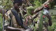 Les rebelles en Centrafrique