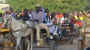 Des charretiers au Sénégal