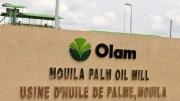 Olam Palm Mouila