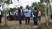 Le président Ali Bongo Ondimba à la plantation d'Alanga