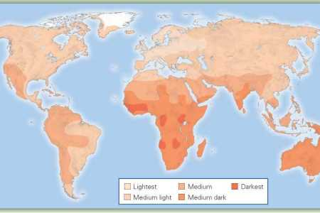 Skin tone world map 4k pictures 4k pictures full hq wallpaper japanese north south gradient in iq predicts differences in stature japanese north south gradient in iq predicts differences in stature skin color income gumiabroncs Choice Image