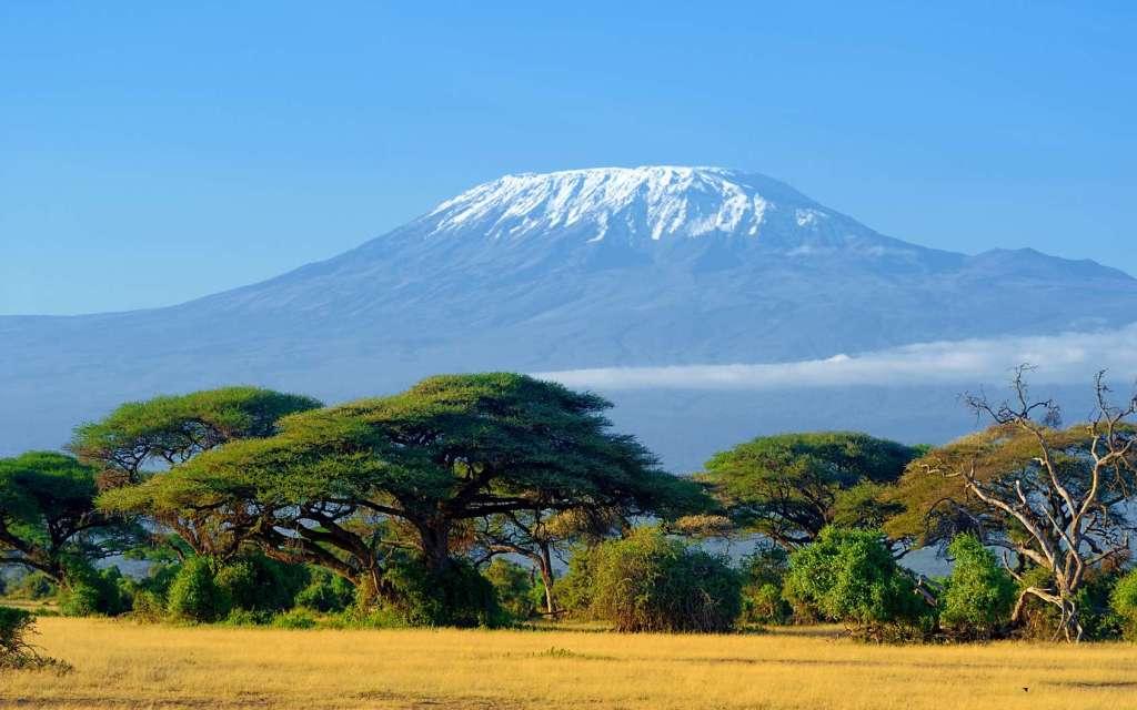 kenya kilimandjaro feu incendie