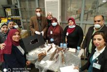 Egyptian customs intercepts remnants of mummies smuggling to Belgium