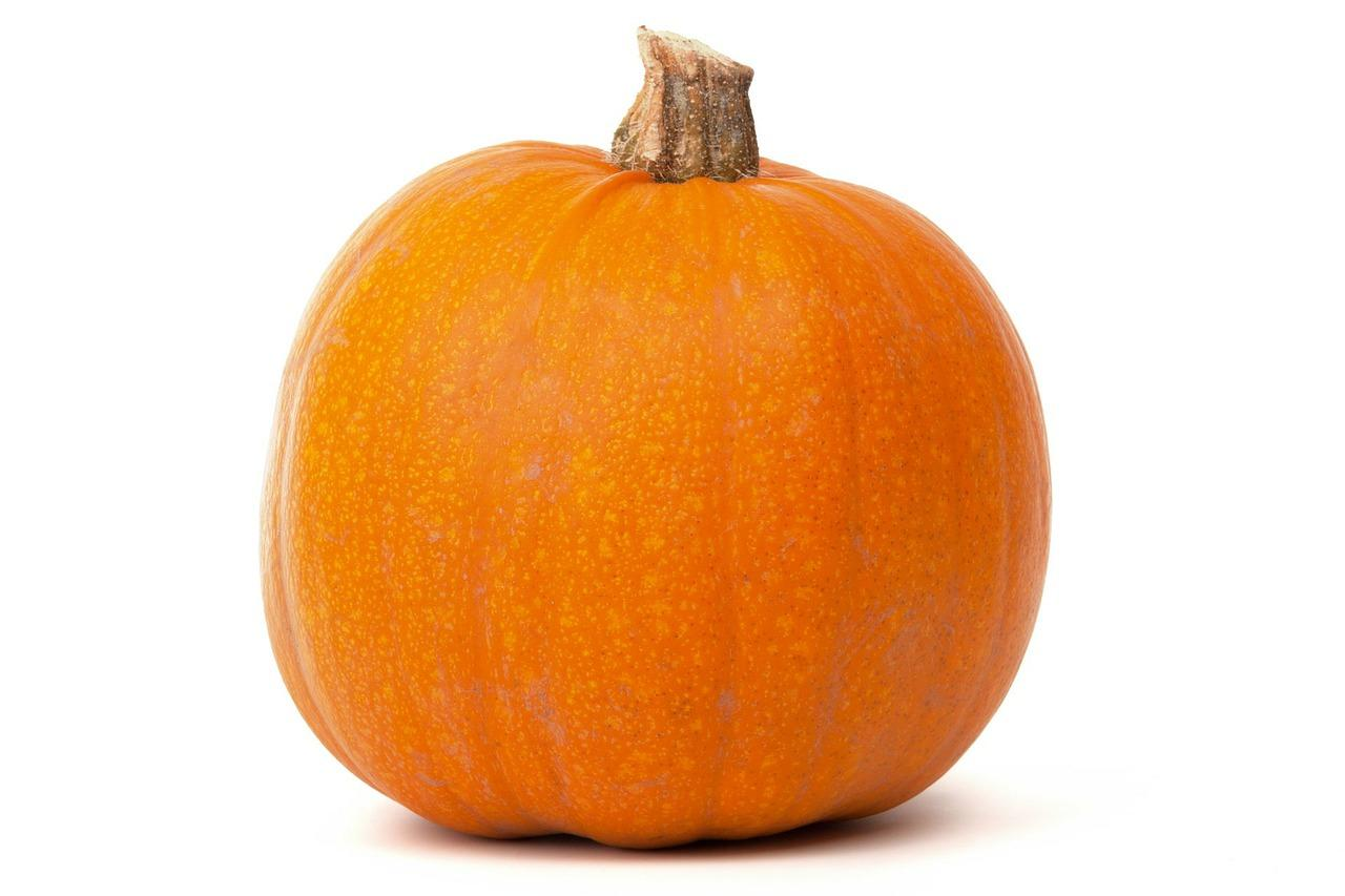 Attention to Halloween: some pumpkins are poisonous