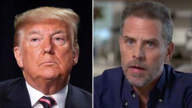After acquittal Trump: Republican senators go after Hunter Biden