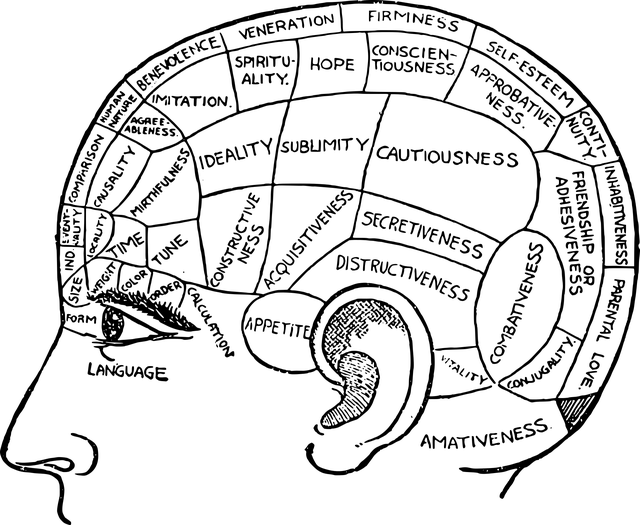 Make yourself smarter with brain exercise