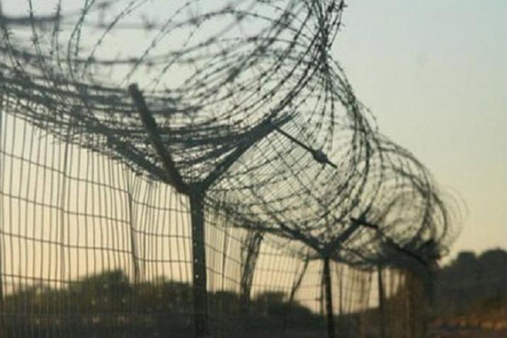 The Electric Fence of Botswana – Zimbabwe