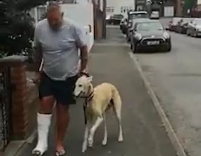 Boss breaks ankle, dog imitates his walking style to give him heart