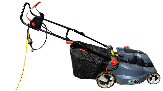 Electric push mower: affordable prices