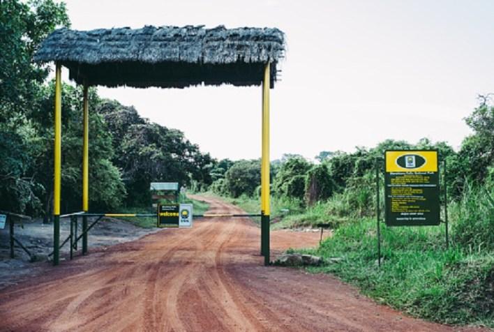 Safari in Murchison Falls National Park