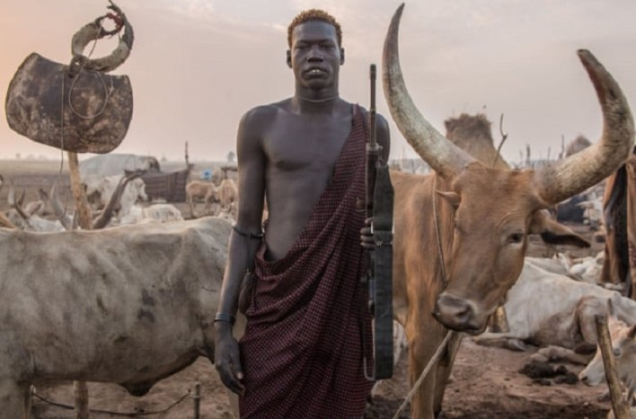Dinka man with his cows