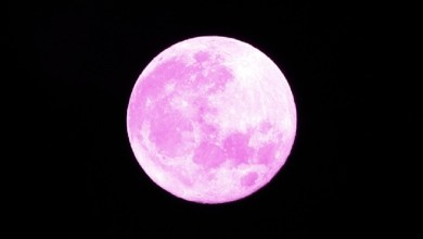 Tonight it is worthwhile to look outside. We get to see a 'pink' super moon. This full moon is named after the blooming pink spring flowers, but in reality, is more likely to be gold in color.