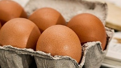 What happens to the body if you eat three eggs a day