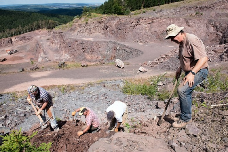 """Paleontologists find the remains of a """"talkative"""" dinosaur in Mexico"""