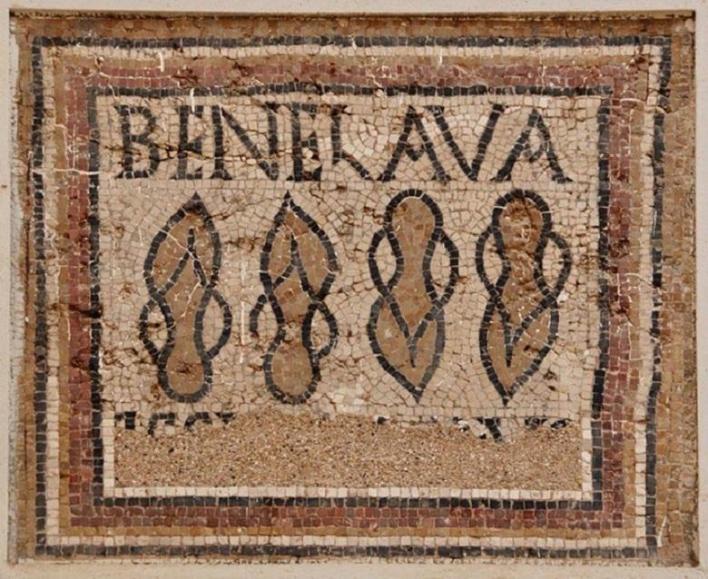 Mosaic found in Timgad