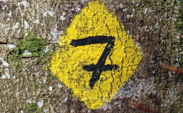 Sacred or widely used: the number 7 meaning