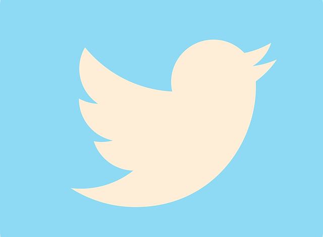 Nigeria and 3 other countries that have banned Twitter