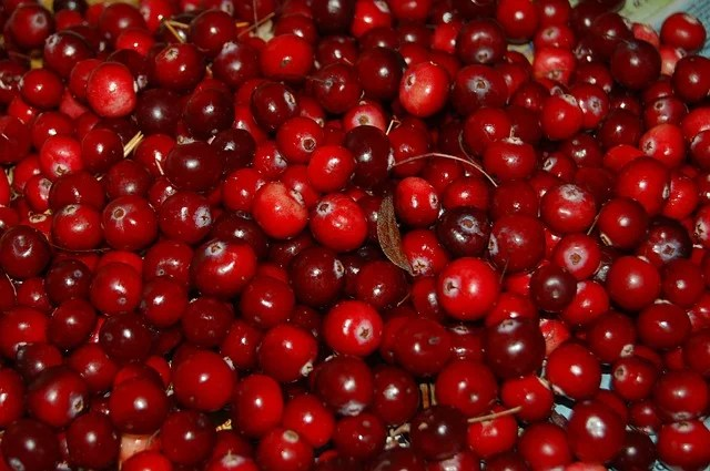 Top 9 most useful berries and fruits