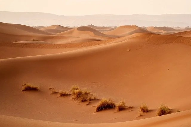 The Tenere desert and its unique sands: Facts to know