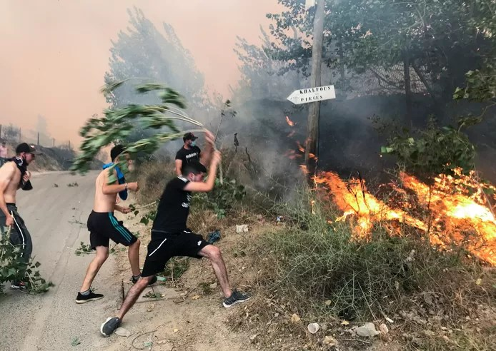 Algerians trying to stop the fire