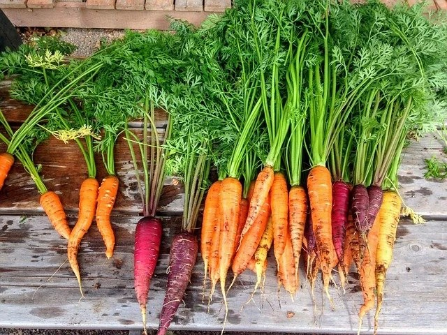 5+ health benefits of carrots