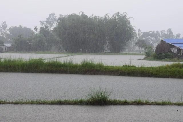 helfty rainfall