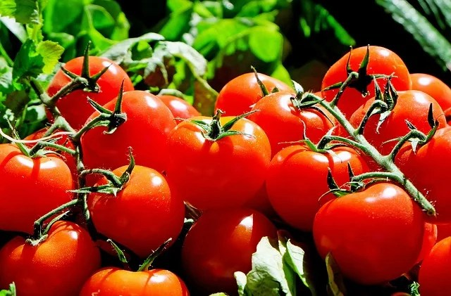 5 health benefits of tomatoes you might not know