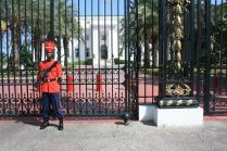 Le palais présidentiel / The President's palace