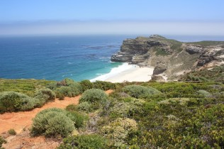 La plage située entre Cape Point et le Cap de Bonne espérance / A beach located between Cape Point and the Cape of Good hope