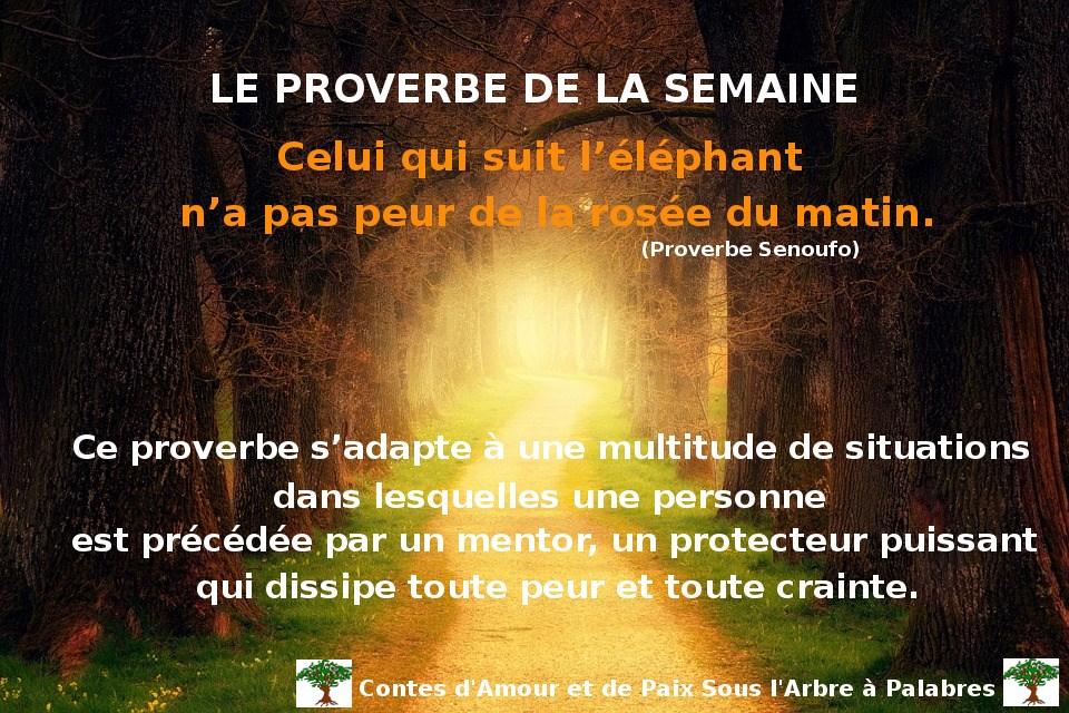 Proverbe Senoufo – Celui qui suit l'éléphant