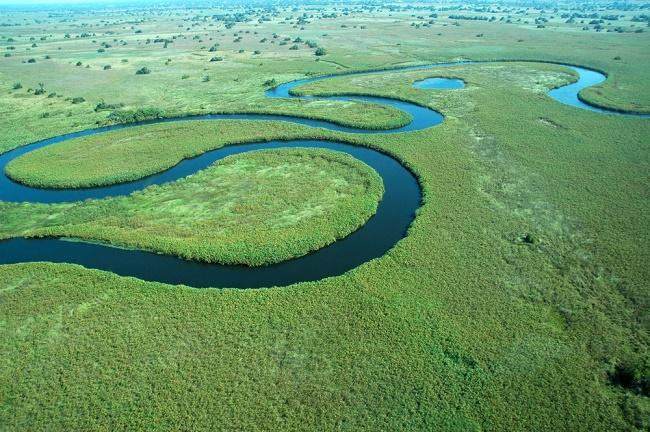 Delta de l'Okavango et Moremi
