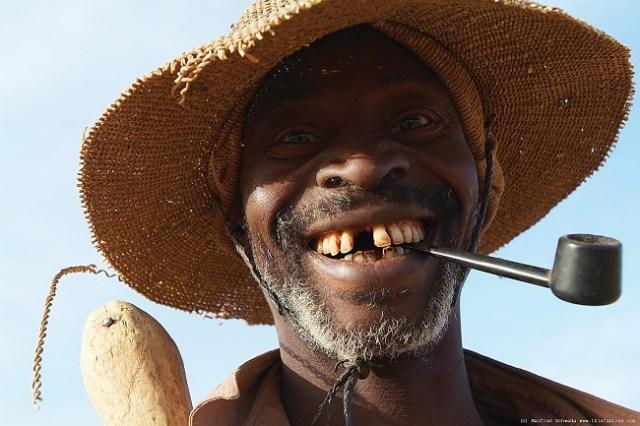 dents jaunes africain