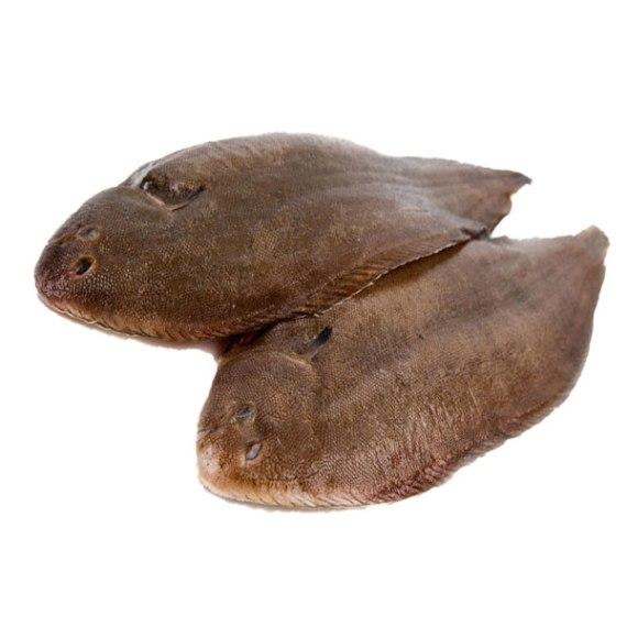 Flat fish, flatfish