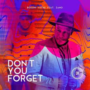 Boddhi Satva - Don't You Forget (feat. Zano) 2017
