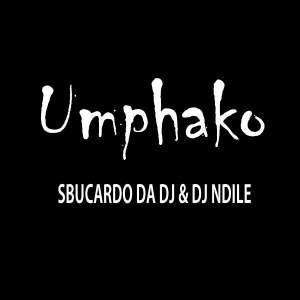 Sbucardo Da DJ & Dj Ndile - Umphako