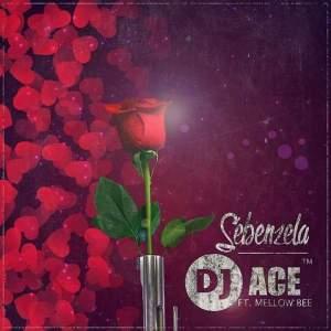 DJ Ace - Sebenzela feat. Mellow Bee
