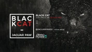 Jaguar Paw - Black Cat (Original Mix)